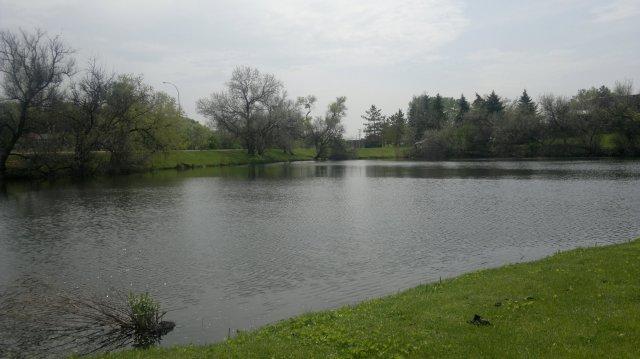 N8 Pond